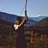 Bhutan 1992 - Punakha lavori del riso